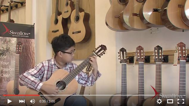 Swallow Guitars C920A demo video