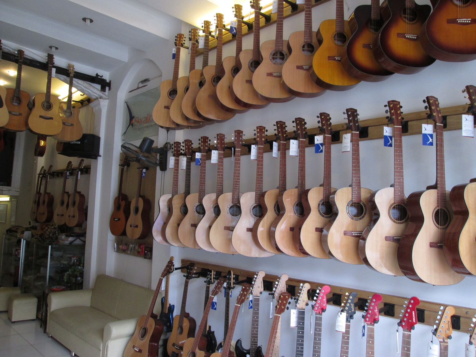 Showroom Swalow Guitars
