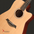 Swallow Acoustic Guitar D312ce