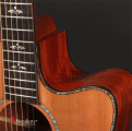 Swallow Acoustic Guitar D712ce