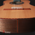 Swallow Classic Guitar CW620
