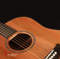 Swallow Acoustic Guitar D700