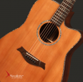 Swallow Acoustic Guitar D912ce