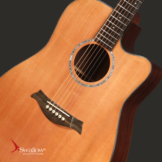 Swallow Acoustic Guitar D900ce